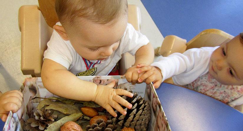 Niño de 1 año explorando hojas y frutos del otoño
